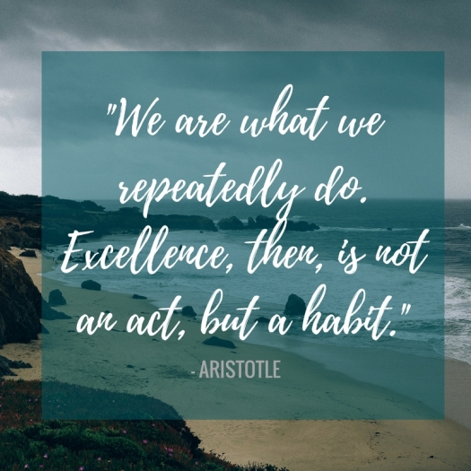 """Often times we get fixated on the big picture, the big dreams, the big New Year. But so often, change happens in small baby step moments, one small decision at a time. """"Excellence, then, is not an act, but a habit."""" 