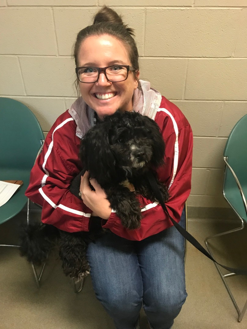 Introducing Hamilton: Our New Cockapoo Puppy | amandabixler.com